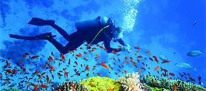 Plonge sous marine Ibiza seminaire incentive