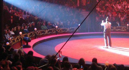 Le cirque comme activité Team building