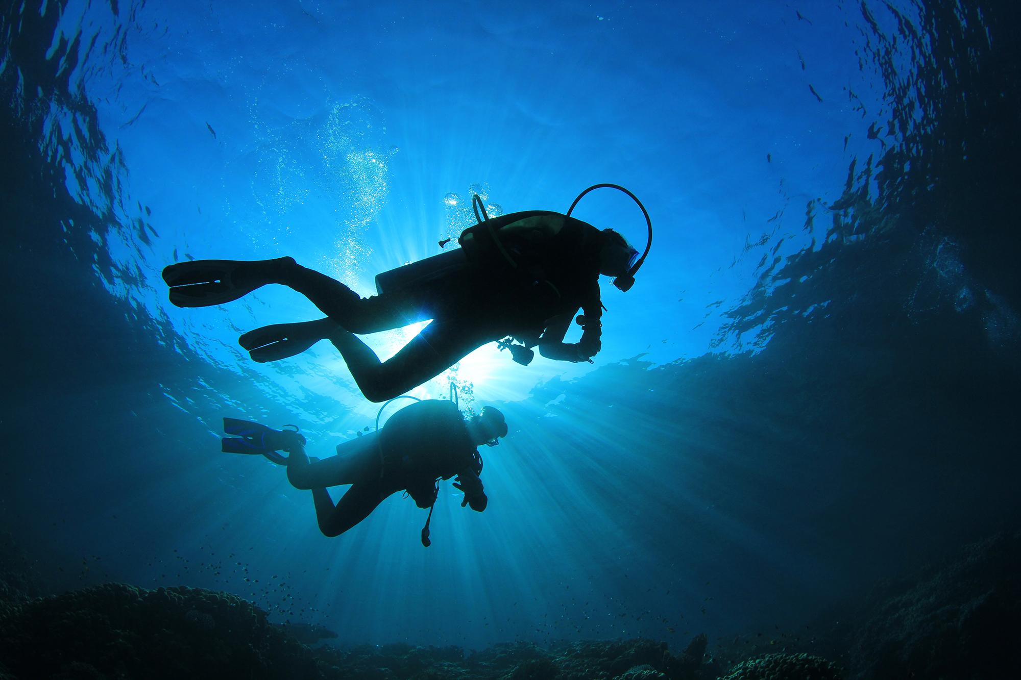 Séminaire Ibiza plongée sous marine